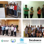 InternationalEcoentrepreneurs_Incubaeco_UNEP